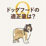 初めて犬を飼われた方必見!ドッグフードの適正な量の考え方|一般的な計算式と肥満チェックの方法などまとめ