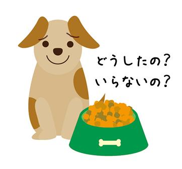 ドッグフードを食べない愛犬