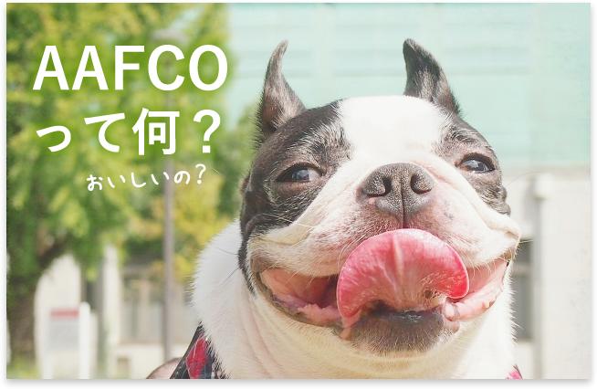 ドッグフードの栄養基準やルールって?AAFCOの文字が無くても大丈夫なの?【危険なフードの見分け方】