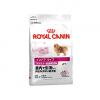 ロイヤルカナンの原材料の安心度や口コミの評判は?|ドッグヘルスドバイザーがおすすめ度を評価します