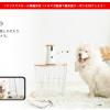 【2018】ファーボがクリスマスセール!当サイト配布のクーポンで10,000円オフ!愛犬へのプレゼントにどうですか?