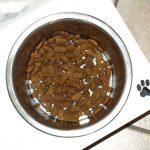 無添加ドッグフードで小粒のおすすめランキング | 小型犬や早食いワンコに!人気のフードをまとめてご紹介します