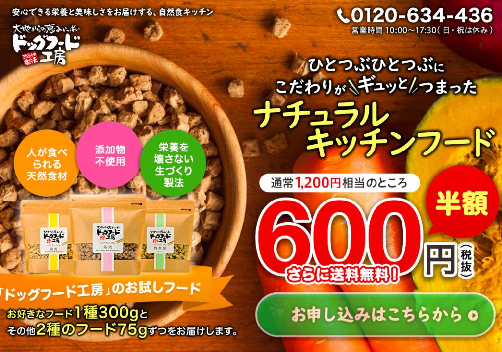 大地からの恵みいっぱいドッグフード工房【お試し商品】