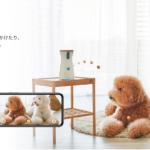 【2019春】Furboドッグカメラ平成最後のビッグセール開催中!セール詳細はこちら | 8,100円オフで手に入れられるチャンスを見逃さないで!