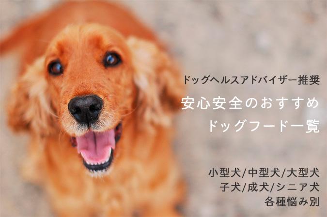 【ドッグヘルスアドバイザー監修】安心安全のおすすめドッグフード一覧(小型犬〜大型犬の各年齢別)|お悩み別からも探せます!