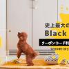 【2019秋】Furbo(ファーボ) BLACK FRIDAY SALE !クーポンコード配布中 | さらに1,000円引きでお得にゲットしよう!